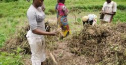 10,000 acres Farm land in Epe