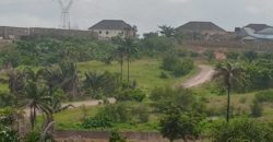 One and Half plot in Amawbia